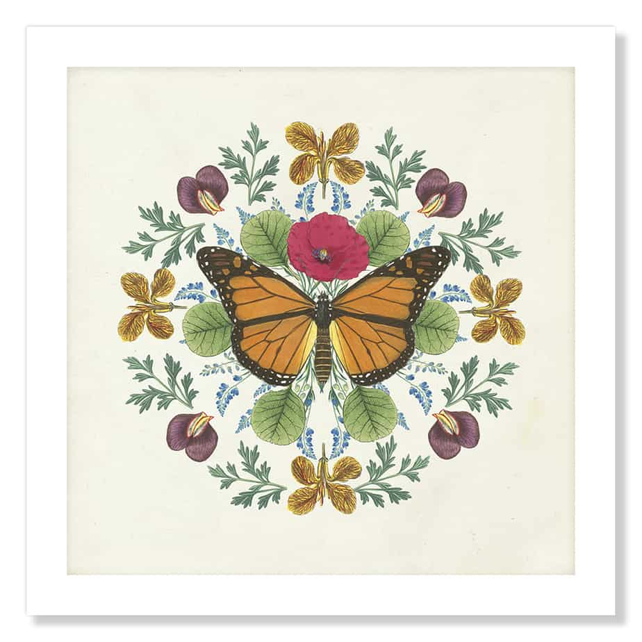 35994a Butterfly Mandala I v2 No Frame No Background