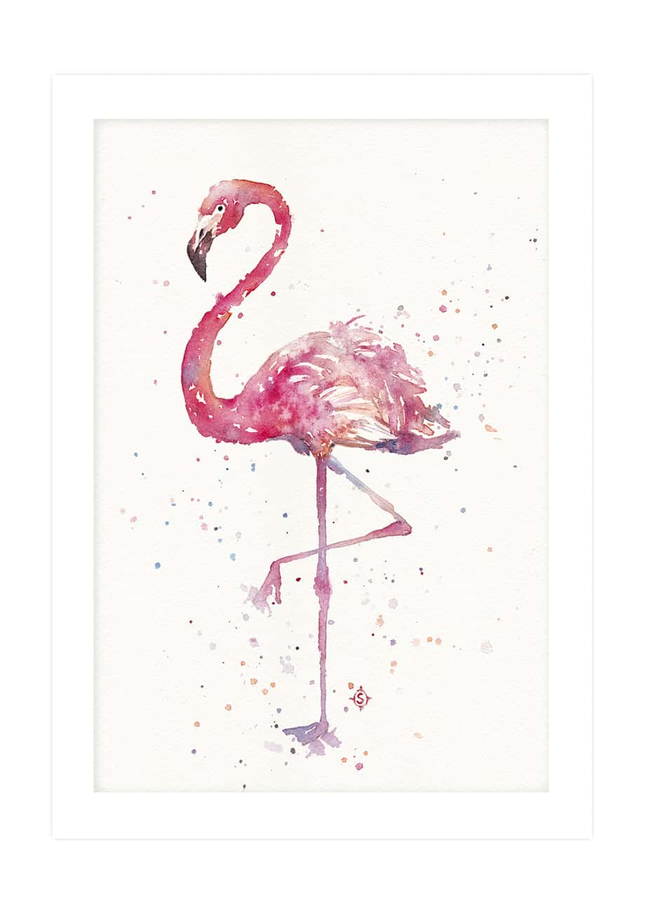Copy of A Flamingos Fancy NoFrameNoBackground